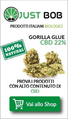 Banner-Italia-Cima-Erba