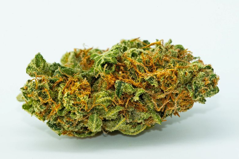 cima di cannabis light di alta qualità