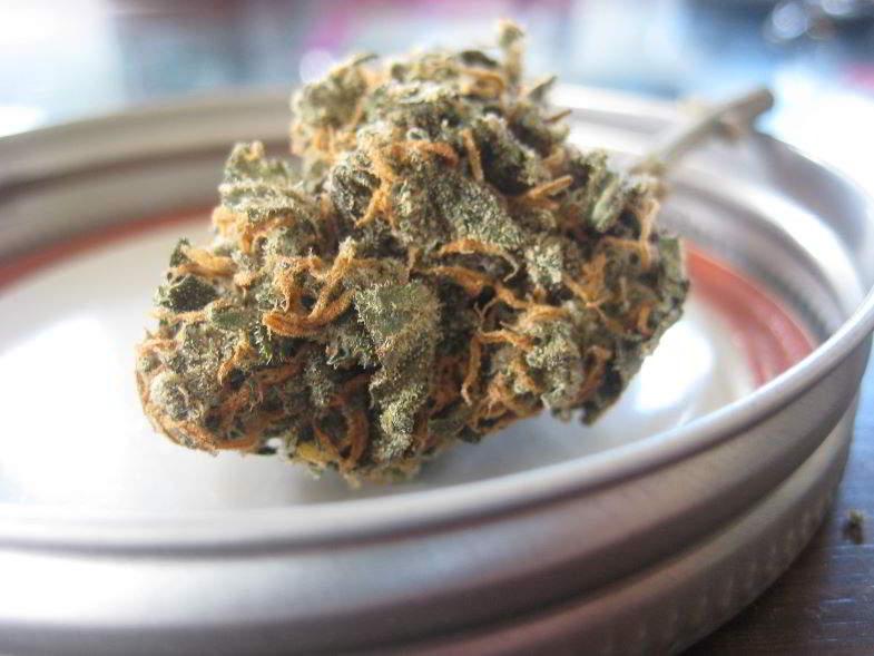 Cannabinoide CBG: proprietà di una sostanza affascinante.