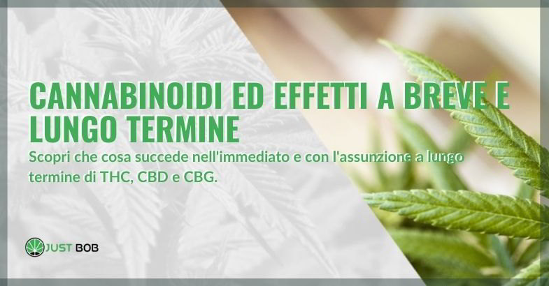 Cannabinoidi effetti a lungo termine e a breve termine.
