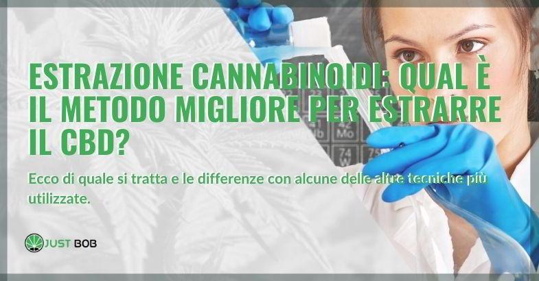 Estrazione cannabinoidi: approfondimento.