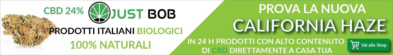 Cannabis legale CALIFORNIA CBD