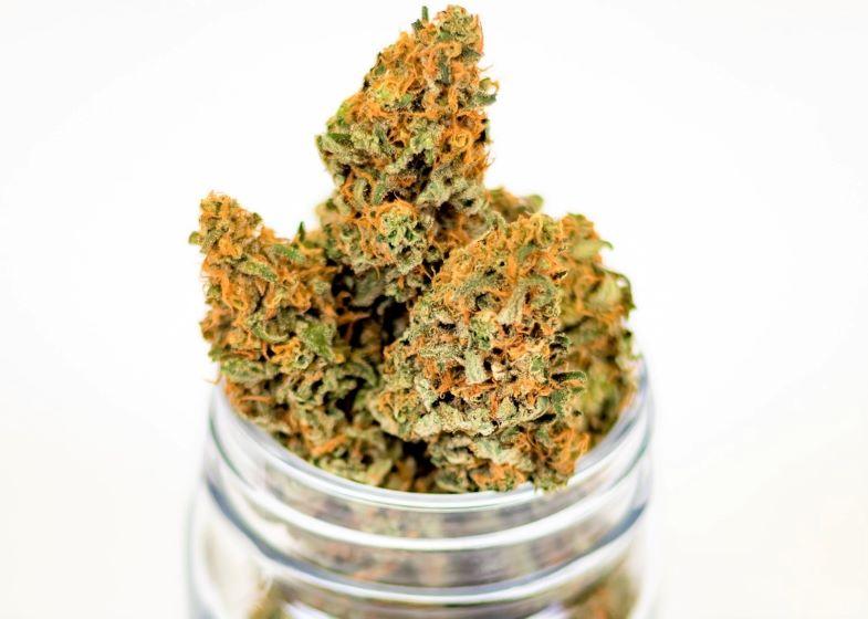 come riconoscere una cima di cannabis di qualità