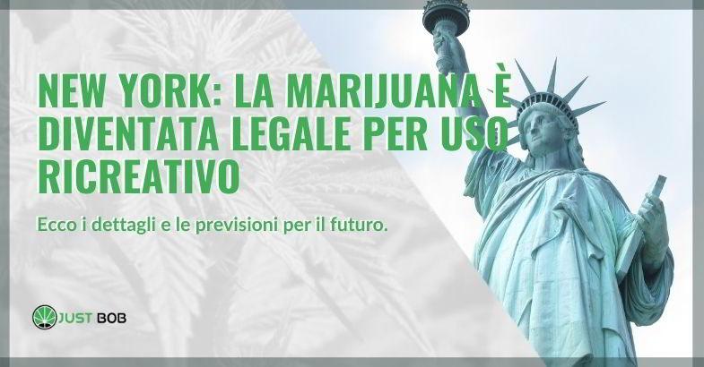 New York marijuana legalizzata dalla maggioranza.