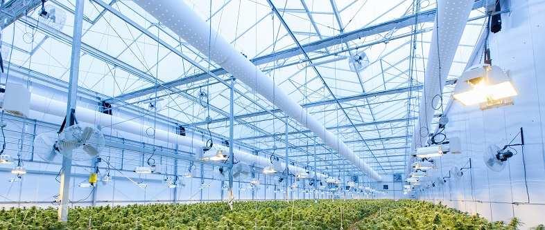 La serra è l'ambiente ideale per realizzare la coltivazione aeroponica