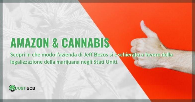 Amazon e cannabis
