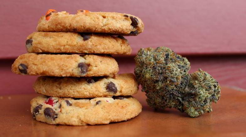 biscotti alla canapa per uso alimentare