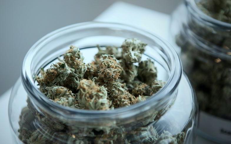 cannabis e principi attivi secondari