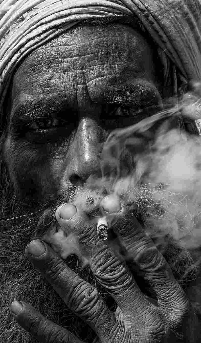 """Hashashin dall'arabo significherebbe """"dediti all'hashish"""" o """"fumatore di hashish"""""""