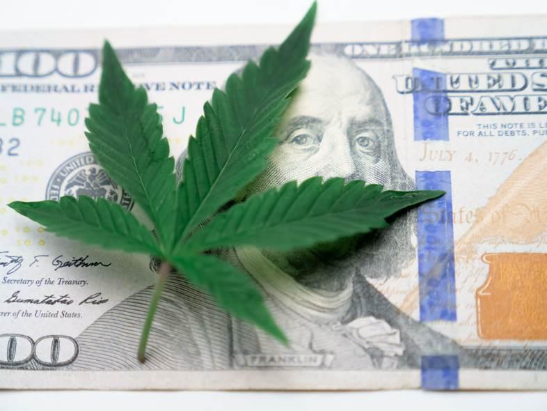 La legalizzazione della cannabis porterebbe maggiore gettito fiscale