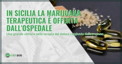 In Sicilia per la terapia del dolore, gli ospedali offrono la marijuana terapeutica.