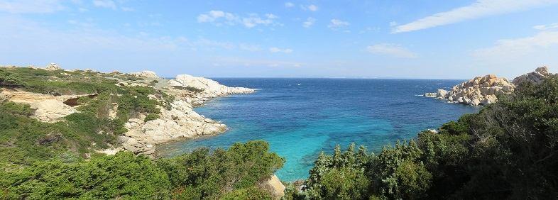 Le condizioni pedoclimatiche della Sardegna sono ideali per la coltivazione della canapa