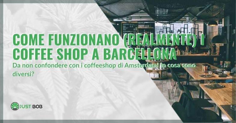 In cosa si differenziano i coffee shop di Barcellona e i coffeeshop di Amsterdam?