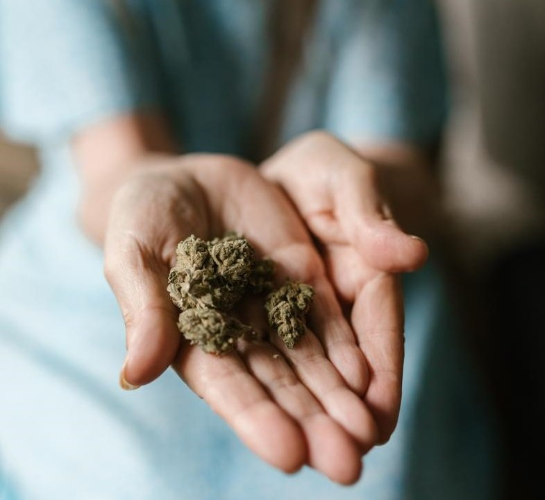 Possedere oltre i 5 grammi di marijuana è punibile.