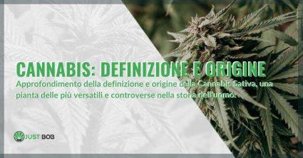 Approfondimento della definizione e origine della Cannabis Sativa