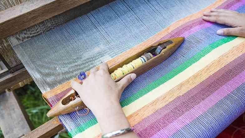 La canapa utilizzata per la produzione di fibre tessili