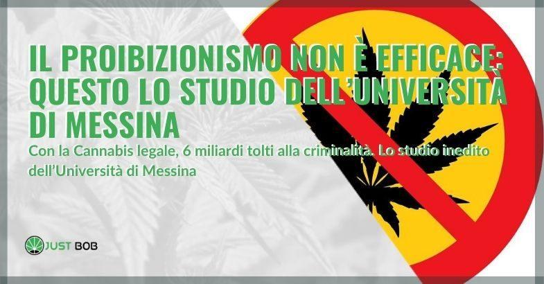L'università di Messina afferma che secondo un loro studio, il proibizionismo della cannabis è inefficace.