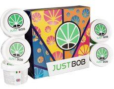 Marijuana legale nel Kit Back2Work Platinum Limited Edition 17g delle migliori infiorescenze